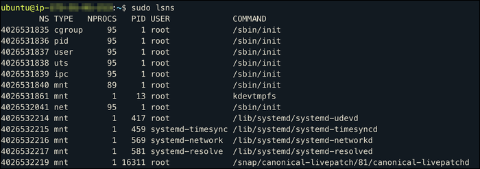 Use lsnscommand (ls-namespaces) to view the current namespaces
