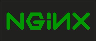 Logo Nginx.