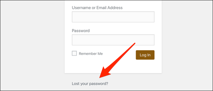 Link at the bottom to trigger an email password reset.
