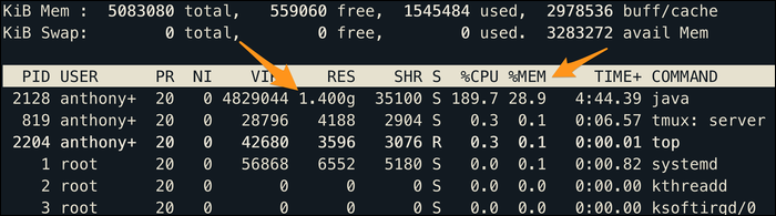 """Currently allocated memory for each process in the """"RES"""" column, as well as the usage as a percentage of total memory in the """"%MEM"""" column."""