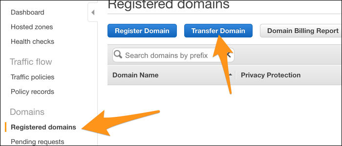 Transferring and registering your domain.