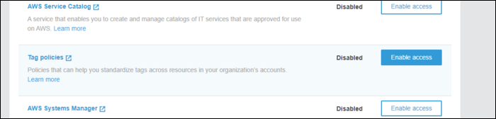 enable tag policies