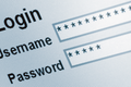 How To Check If Staff Emails Are in Data Breaches