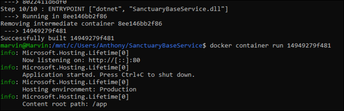 Run your container with docker container run, passing it in the ID of the build container