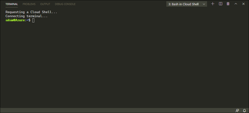 Once you have authenticated, the Bash terminal is available to you.
