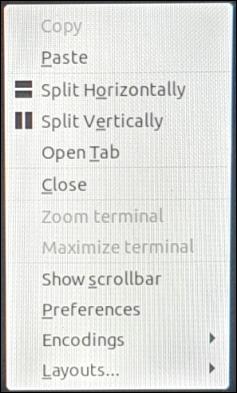 The right-click context menu in Terminator