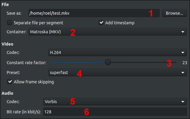 SimpleScreenRecorder Output Profile Dialog
