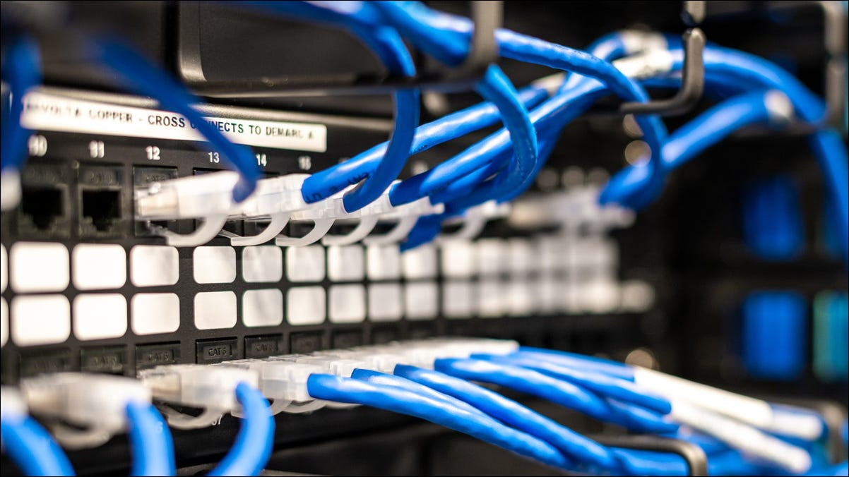 Photo of Ethernet cables in a server