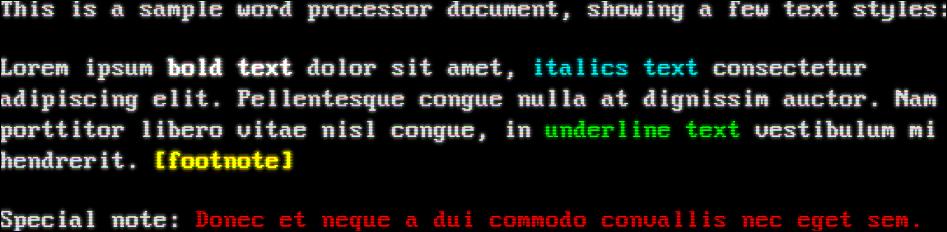 White text on a black background (VGA)