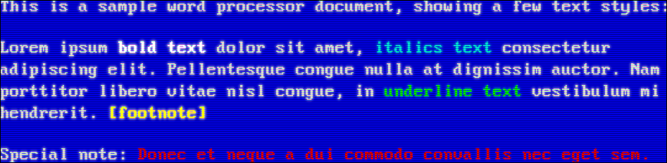 White text on a blue background (VGA)
