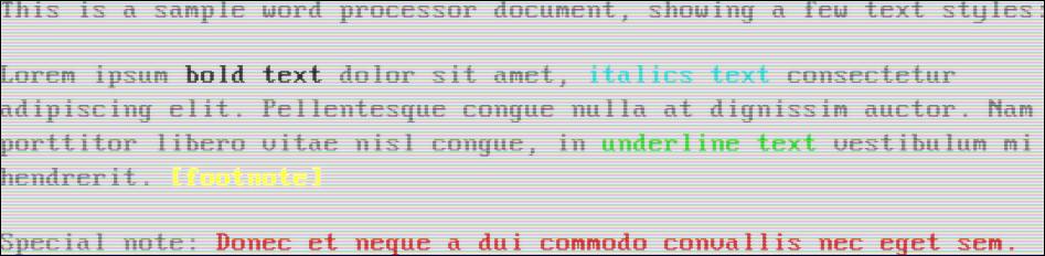 Bright black text on a white background (VGA)