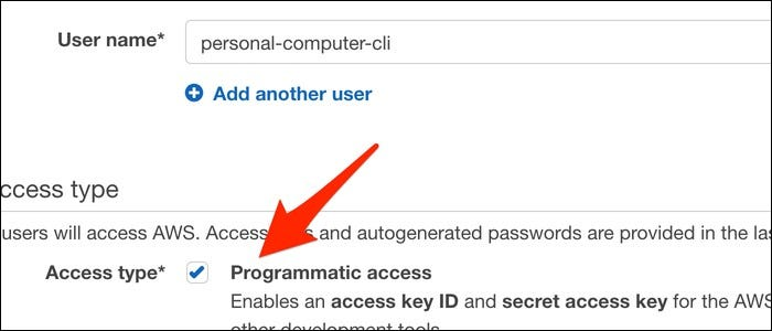 "Name the user and set the access type to ""Programmatic Access."""