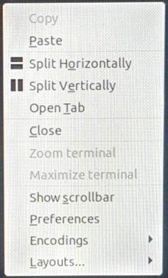 The right-click context menu in Terminator