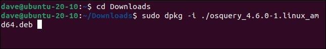 sudo dpkg -i osquery_4.6.0-1.linux_amd64.deb in a terminal window